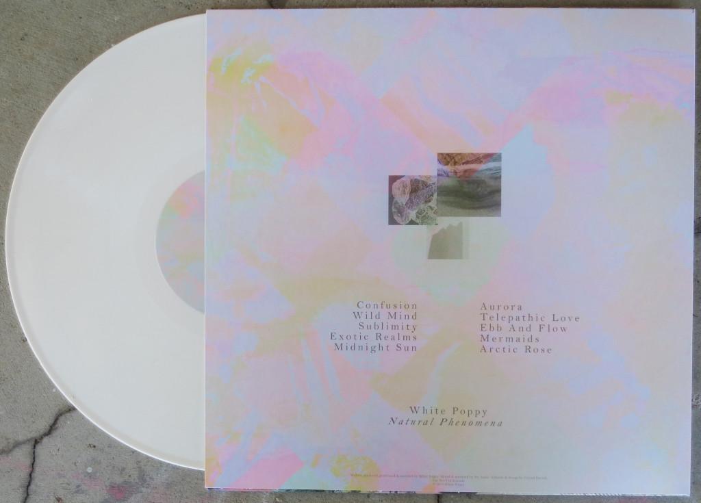 NNF317 vinyl B